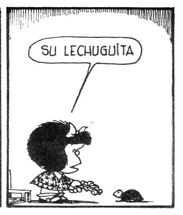 Burocracia, la tortuga de Mafalda. La Ley de 2003 la aligeró bastante.